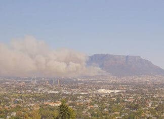 SANParks Table Mountain Order Urgent Evacuations Due to Newslands Fire