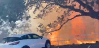 Note Left by Firefighters on Car Seen in Cape Town Fire Video