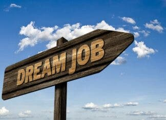 8000 new jobs south africa employment stimulus