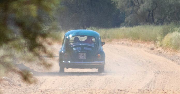 Honeymoon Couple Rescued in Beetle with Lions 2 Metres Away, in Kgalagadi