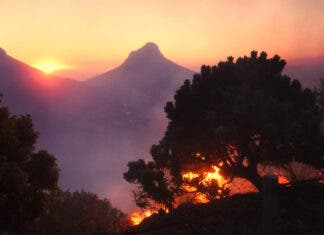 Cape Town wildfire Table Mountain