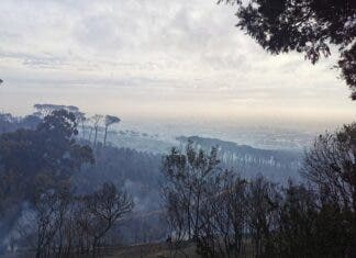 A Table Mountain fire has destroyed buildings and left Devil's Peak burnt.