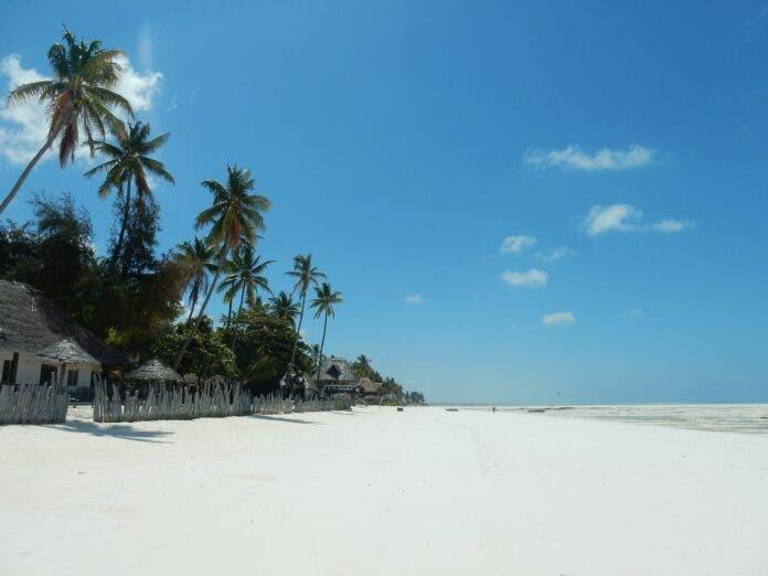 Mango Passengers Advised to Book Alternatives to Zanzibar and Local Destinations