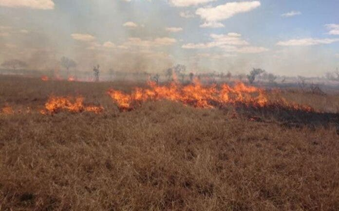 KNP prepares for the winter fire season