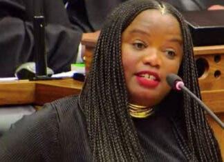 Phumzile Van Damme DA MP Resigns
