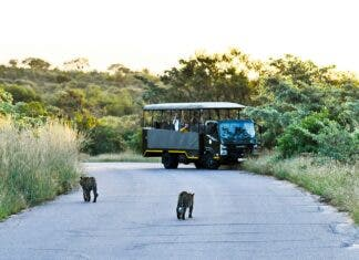 SANParks Offers Great Discounts for Select Parks and Camps