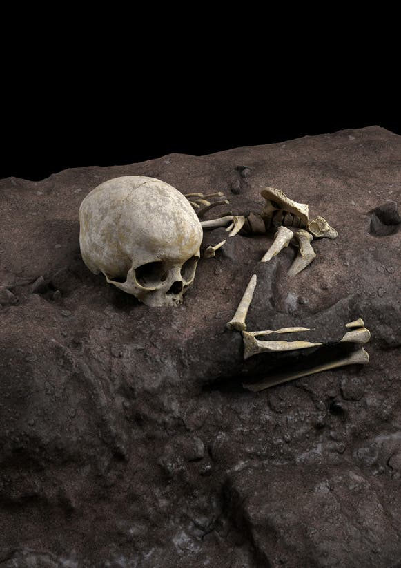 The remains of a child roughly age 3 who lived about 78,000 years ago and was found in a burial pit at a cave site in Kenya called Panga ya Saidi, the oldest-known human burial in Africa, are seen in an undated virtual reconstruction. Jorge Gonzalez/Elena Santos/Handout via REUTERS