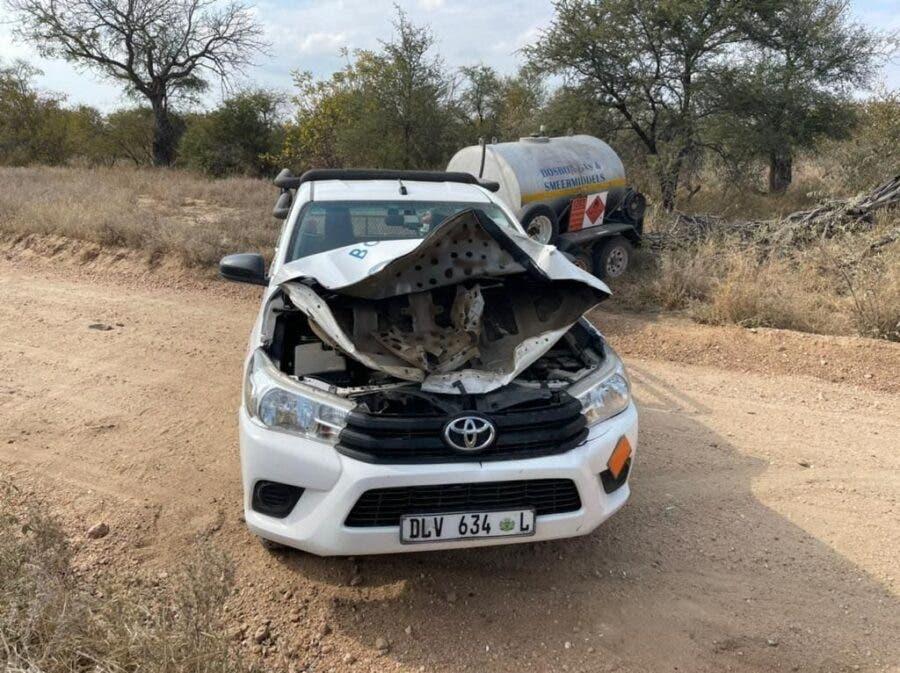 elephant attacks bakkie vehicle