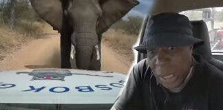 Brave driver Norman Nukeri from Bosbok Gas & Smeermiddels was charged by an elephant on Tuesday.