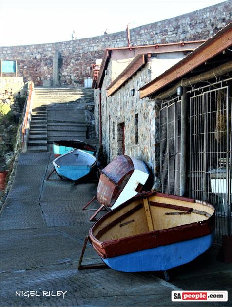 hermanus boats