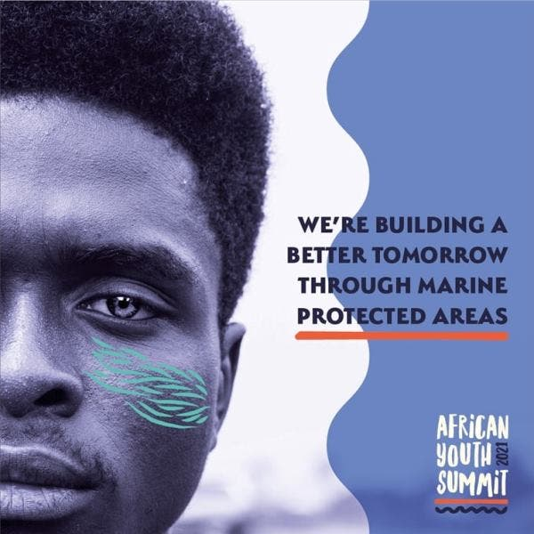African Youth Summit launched