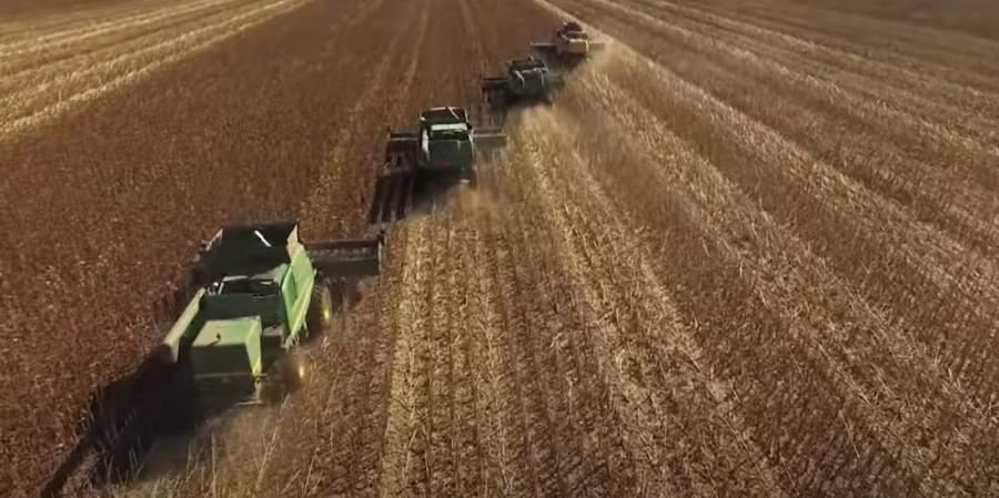 farming carte blanche