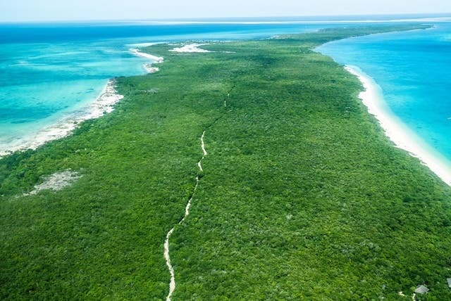 Aerial view of Vamizi Island showing coral rag forest, Mozambique