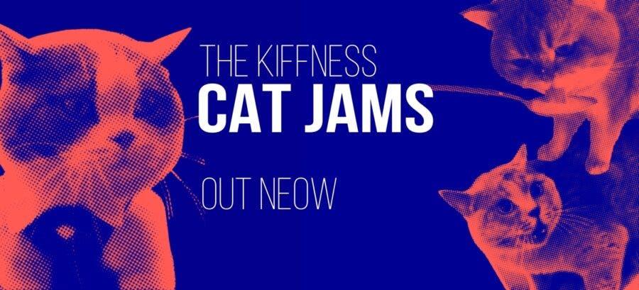 the-kiffness-cat-jams