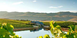 Creation best vineyard South Africa top 10 world