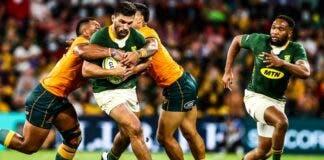 Springboks lose Wallabies South Africa Australia rugby