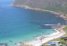 NSRI Appeal to South Africans to be 'Cautious' Around Seals and Sea Animals