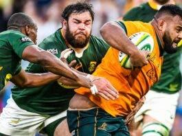 Australia beats South Africa rugby springboks
