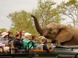 SA's Tourism Equity Fund with BEE Criteria Declared Unlawful by Court