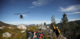 Invasive vegetation removed from South Africa's Franschhoek mountains